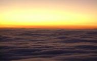 bosque de niebla 6 (Cooper.)